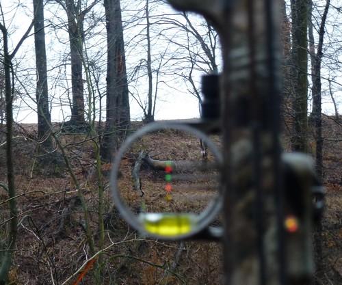 Achtung: Hüttertal Winter 3-D enfällt im Februar 2019